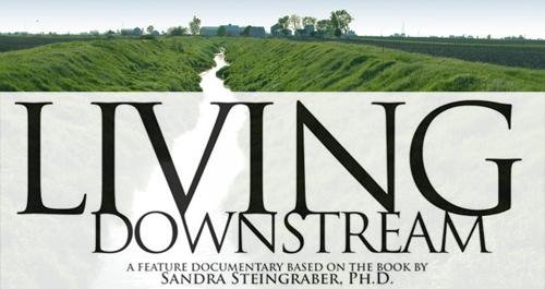 Living Downstream documentary